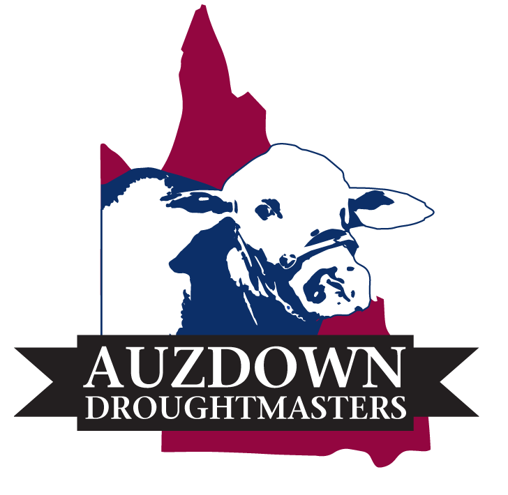 auzdown-droughtmaster-logo.png