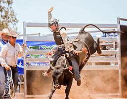 2021 Stanthorpe Rodeo