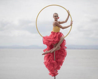 Mimosa Performance