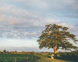 Old Oak Farm