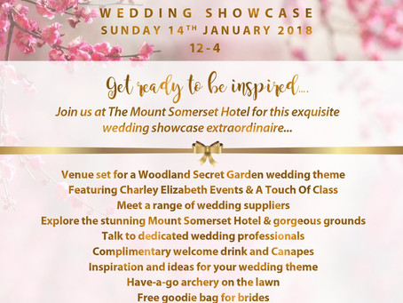 "The Mount Somerset ""Wedding showcase"" 14.01.18"