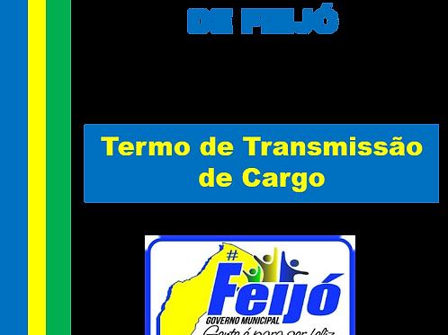 TERMO DE TRANSMISSÃO DE CARGO N°121