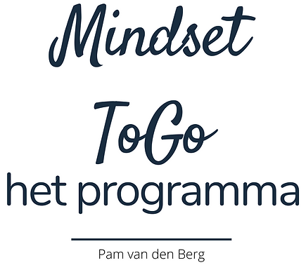 Mindset ToGo (1).png