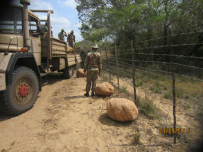 Contraband, dagga and illegals all grabbed in Op Corona net