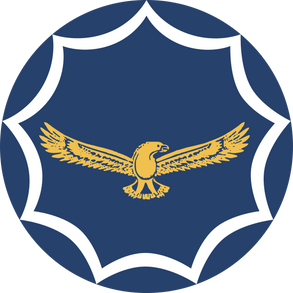 South African Air Force Reserve Force Squadrons