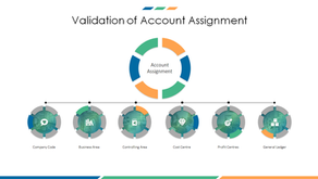 FI – Validation of Account Assignment Combinations