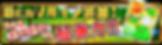 046_ vruin2_banner.png
