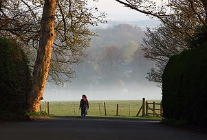 A Dog Walker in Barlaston, Staffordshire
