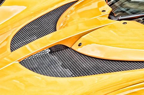 Bright Yellow Lotus Hood
