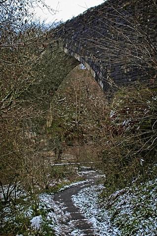 The Causey Arch, Stanley, Co. Durham