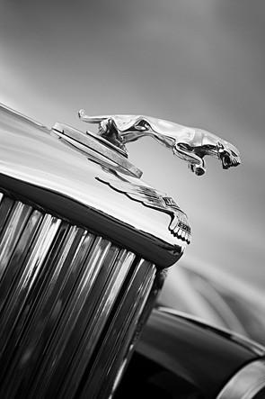 Classic Vintage Car Hood Emblem