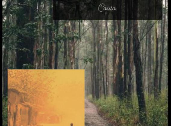 Fanzine - Otoniel Mota - Recortando Palavras (11).jpeg