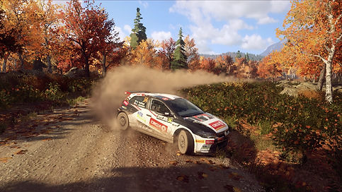 DiRT Rally 2_0_20200507133126.jpg