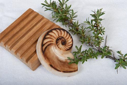 Glyzerin-Seife Nautilus braun-beige