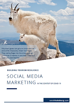 Social Media Marketing pdf resource.png
