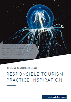 Responsible Practice Inspiration resourc