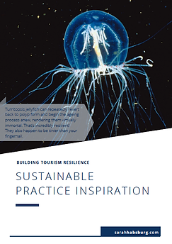 Sustainable Practice Inspiration resourc