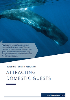 Attracting Domestic Guests pdf resource.