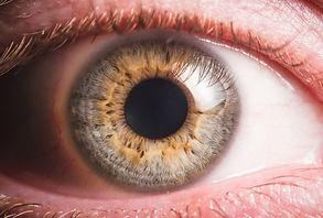 Eye Photo.jpeg