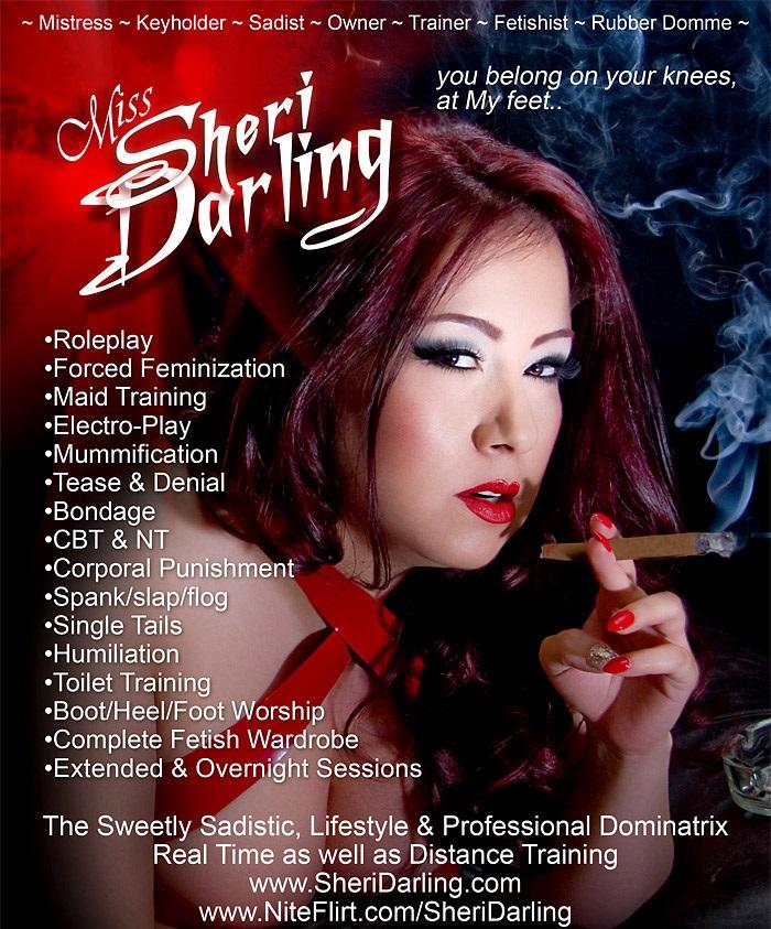 DDI Mag 2013