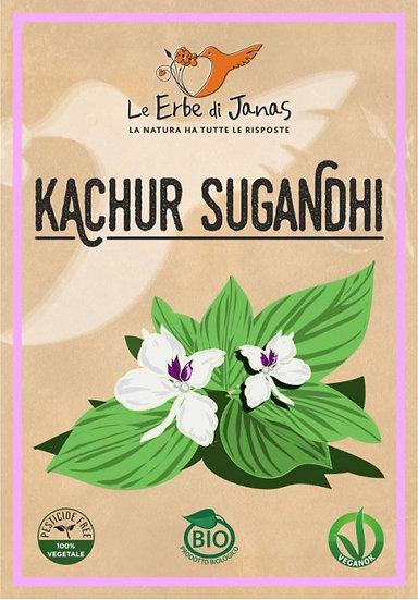 KACHUR SUGANDHI BIO 100 gr