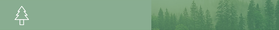 Climate resilience header image