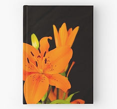 hardcover journals orange lilies flowers