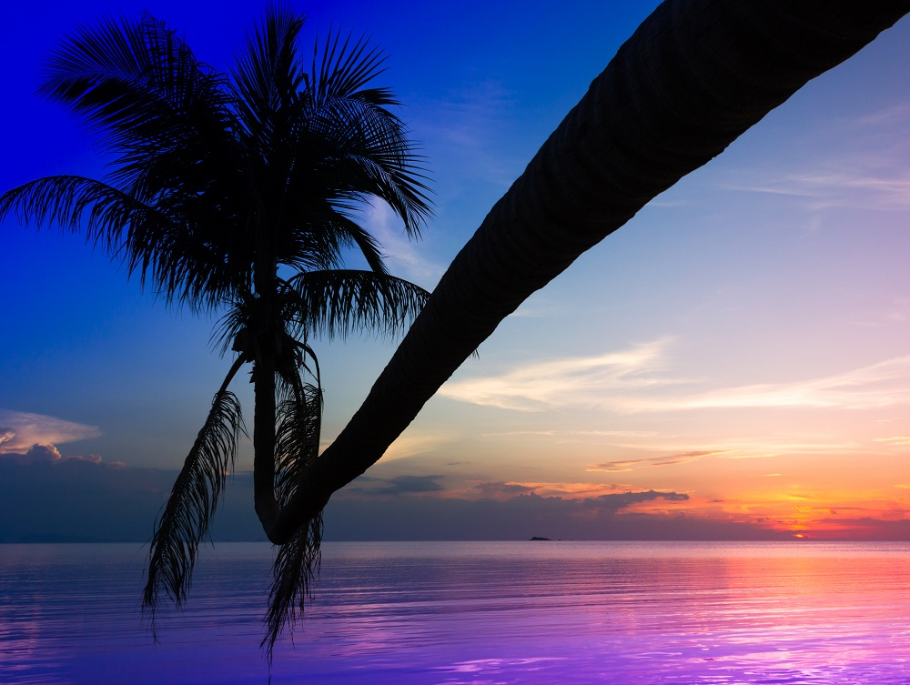 sunset photography nature