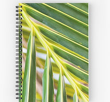spiral notebooks palm tree branch leaves
