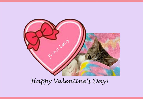 Happy Valentine's Day from Freeman-Fritts!