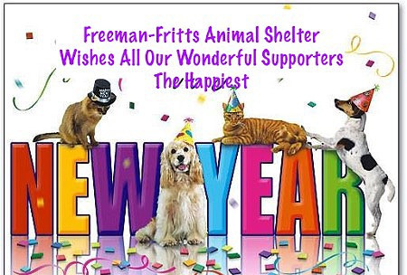 Happy New Year from All Our Woofs and Meows