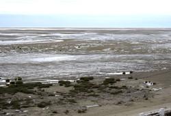 l'immense plage de sable