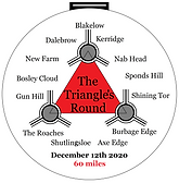 Triangles Round Medal.png