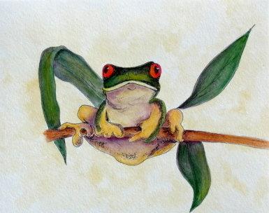 Tree Frog E-Packet