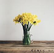 yellow-2590841_960_720_edited_edited.jpg