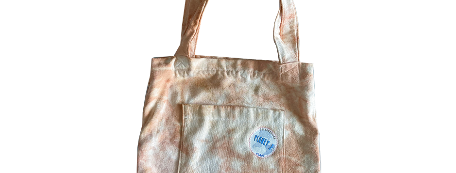 Planet E Canvas Bag