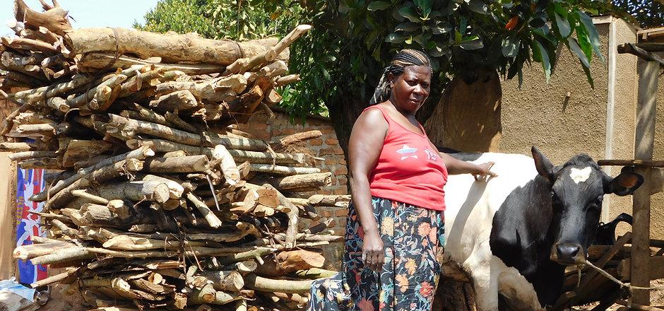 13) Nansera Hanifa --  (2015)b Samosas, cow, firewood, & retail store.JPG