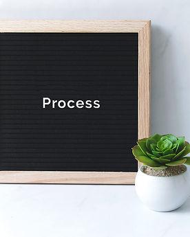 process+cacti.jpg