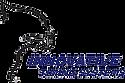Jaguar Chip Timing System