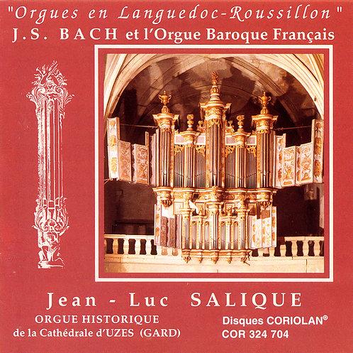 Jean-Luc Salique - J.S. Bach et l'orgue Baroque Français