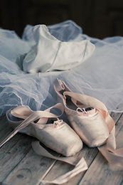 shoes and tutu.jpg