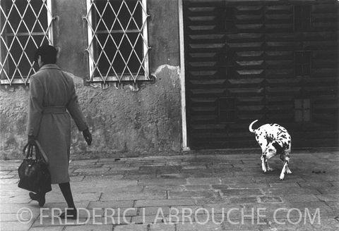 Venise Dalmatiens 72 c.jpg