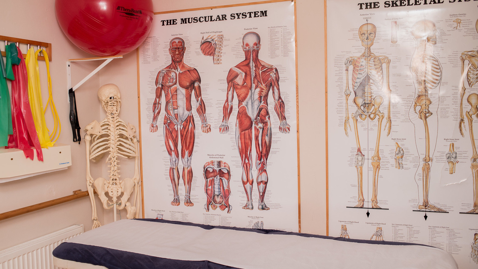 Physiotherapy treatments at The Reinge Clinic Kenilworth, Portishead.