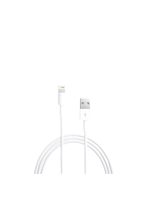 Apple Câble Lightning to USB