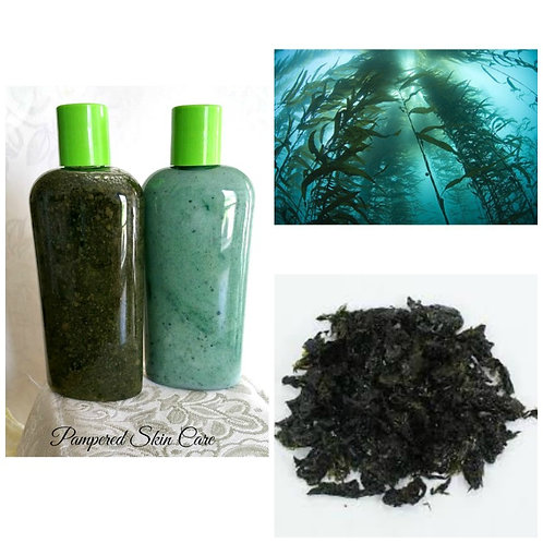 Sea Mineral Rich Kelp & Spirulina Shampoo/Conditioner Set