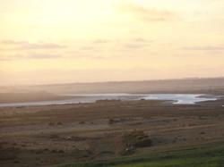 Wetland views