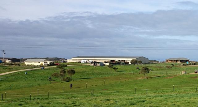 Indoor Arena and Lodges