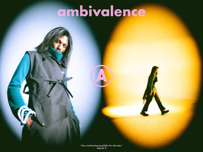ambivalence capsule 2 side by sides2.jpg