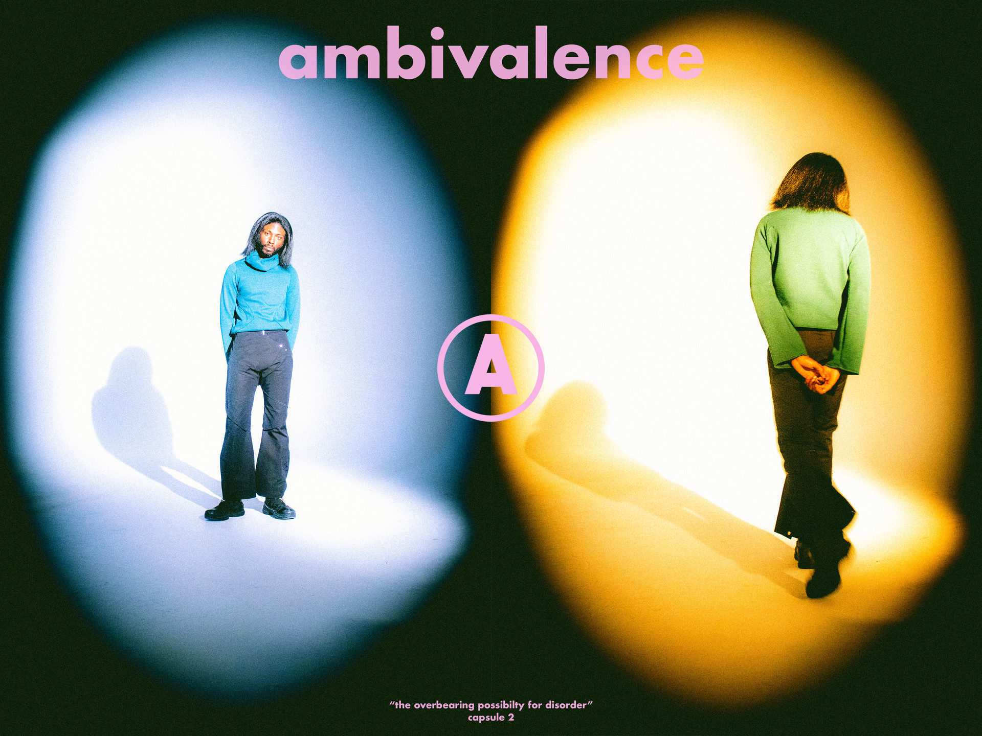 ambivalence capsule 2 by liam walsh