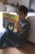 Fernando the Bodega Cat
